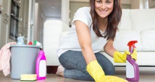 ev hanımlarının yapabileceği ek işler