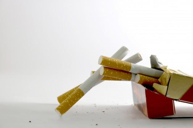 tütün sigara sarıp satabilirsiniz