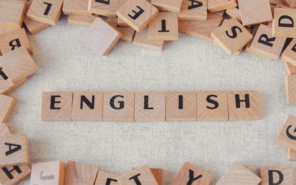çevirmenlik yapabilirsiniz